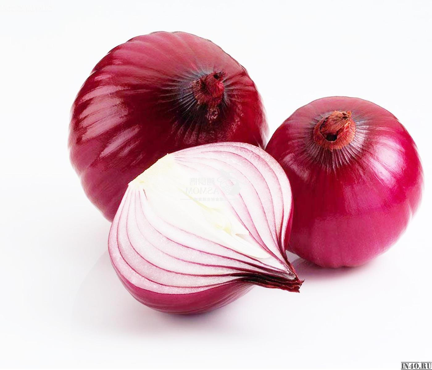 onion_03