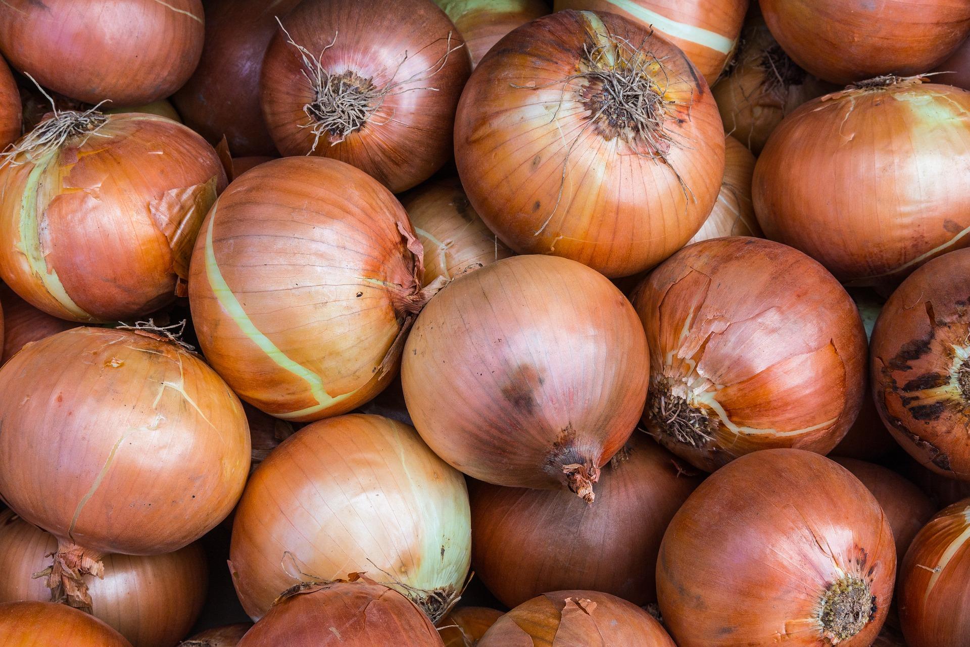 onions-1078149_1920