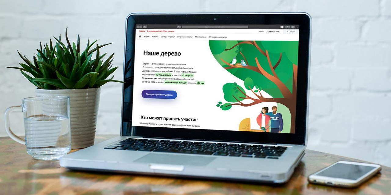 Проект «Наше дерево» стал продолжением программы «Миллион деревьев»